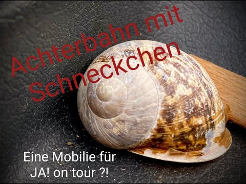 Achterbahn mit Schneckchen I. - JA! on tour findet eine Mobilie!